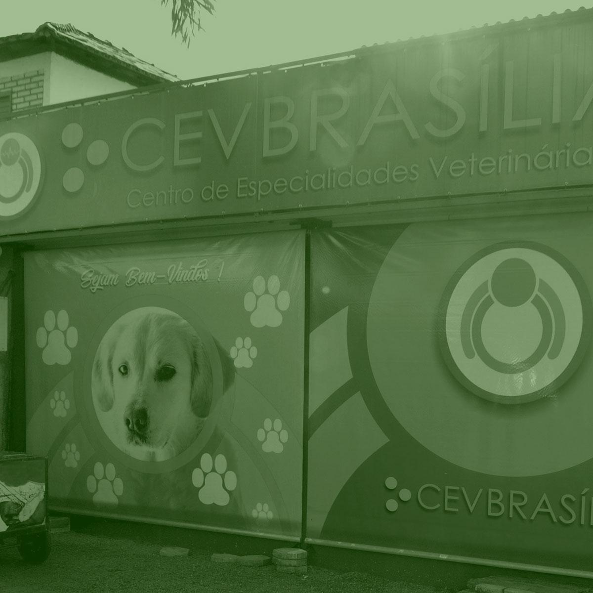 CEV-BRASILIA-CLINICA-VETERINARIA-BRASILIA-FOTOS-CLINICA-HOME-001