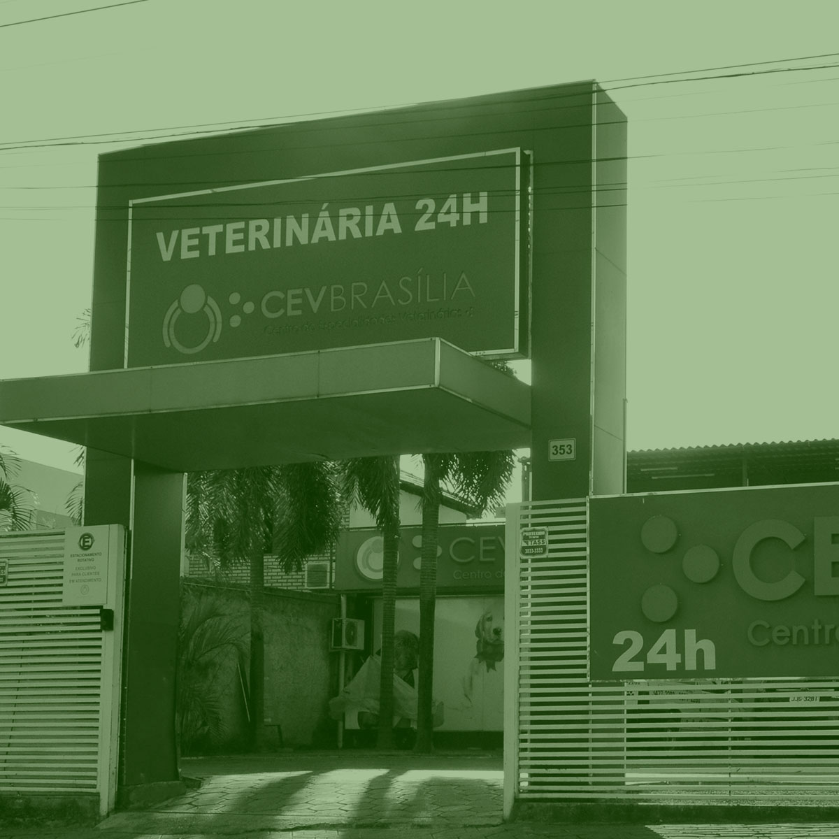 CEV-BRASILIA-CLINICA-VETERINARIA-BRASILIA-FOTOS-CLINICA-HOME-003